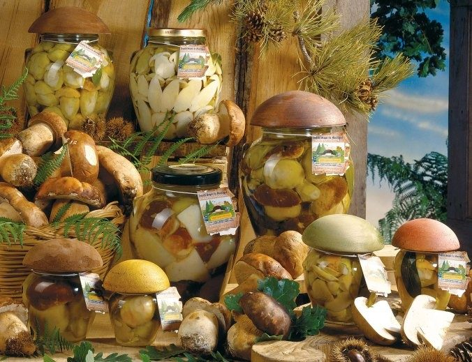 funghi porcini di bosco sott'olio